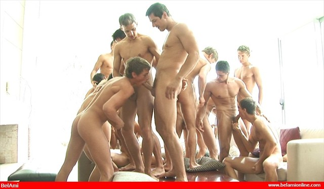 More than you can handle belami
